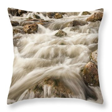 Lost Waterfall Throw Pillow by Iris Greenwell