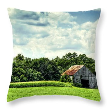 Lothian Throw Pillow