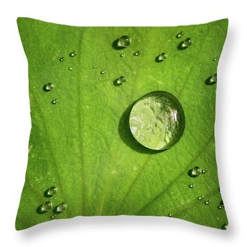 Lots Of Drops Throw Pillow