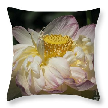 Lotus 2015 Throw Pillow