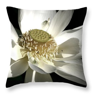 Lotus 8514ds Throw Pillow