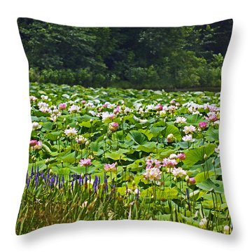 Lotus And Pickerelweed Throw Pillow