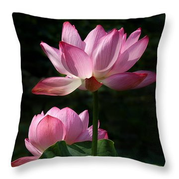 Lotus Beauties--upstaged Dl048 Throw Pillow