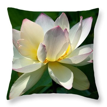 Lotus Beauty--disheveled Dl061 Throw Pillow