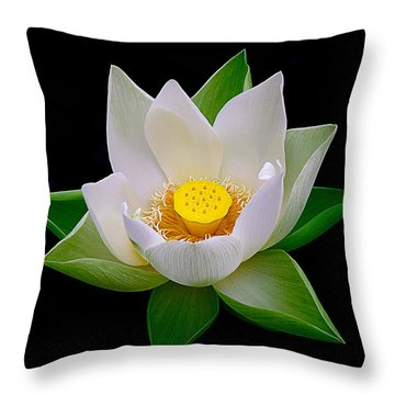 Lotus Blooming Throw Pillow