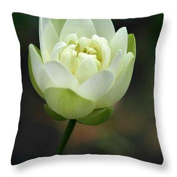 Lotus Blooming Throw Pillow