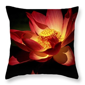 Lotus Blossom Throw Pillow by Paul W Faust -  Impressions of Light