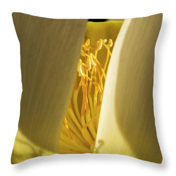 Throw Pillow featuring the photograph Lotus Flower 3 by Buddy Scott