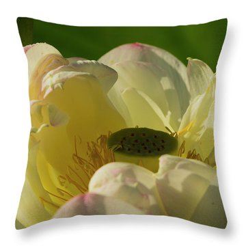 Throw Pillow featuring the photograph Lotus Flower 4 by Buddy Scott