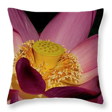 Throw Pillow featuring the photograph Lotus Flower 6 by Buddy Scott