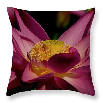 Throw Pillow featuring the photograph Lotus Flower 7 by Buddy Scott