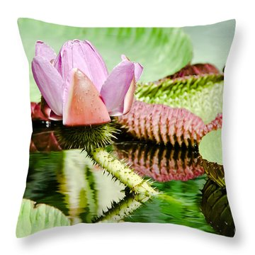 Lotus Flower In Water Throw Pillow
