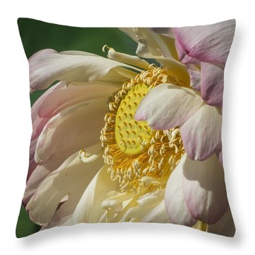 Lotus Glory Throw Pillow
