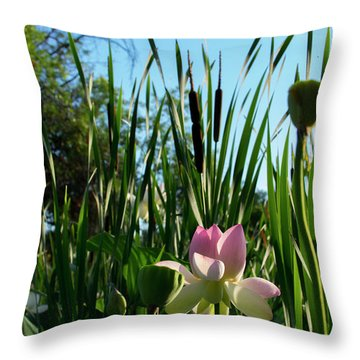Throw Pillow featuring the photograph Lotus Landscape 2 by Buddy Scott