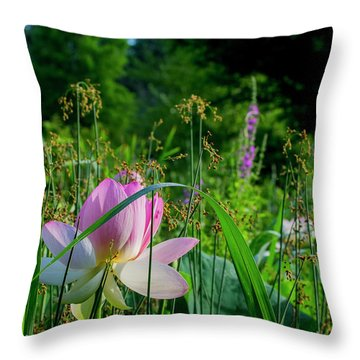 Throw Pillow featuring the photograph Lotus Landscape 3 by Buddy Scott