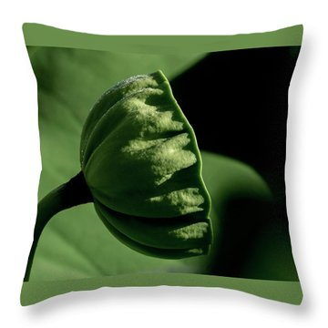 Throw Pillow featuring the photograph Lotus Pod 3 by Buddy Scott