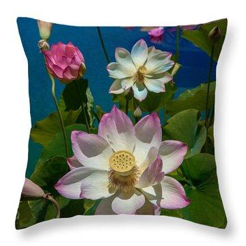 Lotus Pool Throw Pillow by Chris Lord