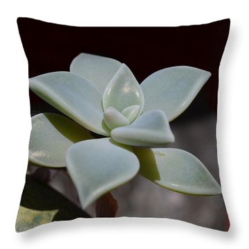 Throw Pillow featuring the photograph Lotus by Richard Ricci