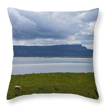 Lough Foyle 4171 Throw Pillow