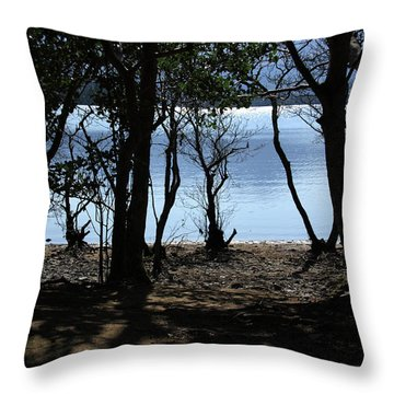 Throw Pillow featuring the photograph Lough Leane Through The Woods by Aidan Moran