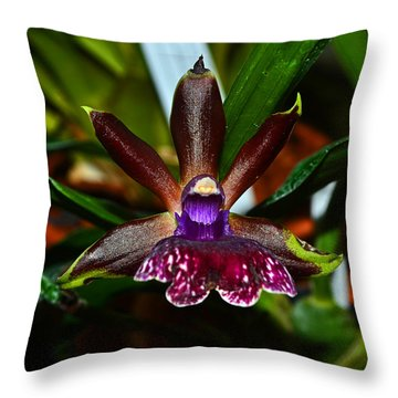 Throw Pillow featuring the photograph Louisendorf Rhein Moonlight Orchid 002 by George Bostian