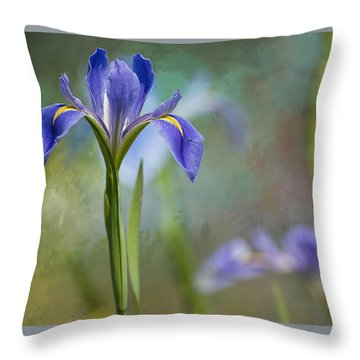 Throw Pillow featuring the photograph Louisiana Iris by Bonnie Barry