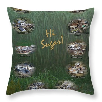 Louisiana Sugar Cane Poster 2008-2009 Throw Pillow