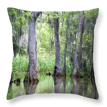 Louisiana Swamp 5 Throw Pillow by Inspirational Photo Creations Audrey Woods