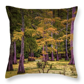 Louisiana Swamps Throw Pillow