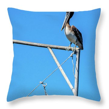 Louisiana's State Bird Throw Pillow