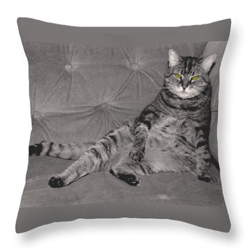 Lounge Cat Throw Pillow by Joy McKenzie