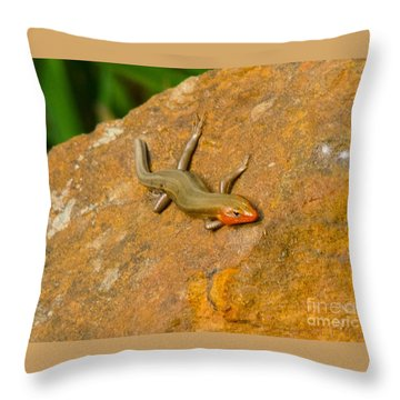 Lounging Lizard Throw Pillow