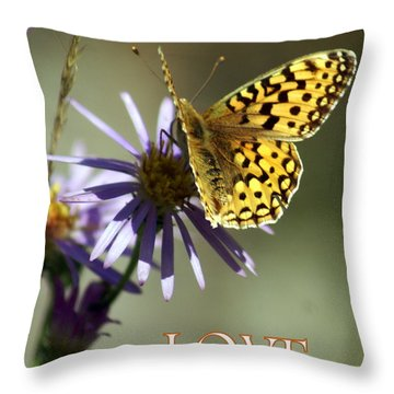Love 1 Throw Pillow by Marty Koch