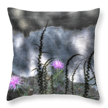 Throw Pillow featuring the photograph Love And Death by Wayne King