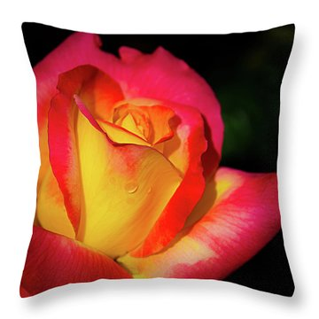 Throw Pillow featuring the photograph Love And Peace Rose by Julie Palencia