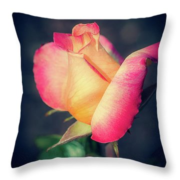 Throw Pillow featuring the photograph Love And Peace Single Rose by Julie Palencia