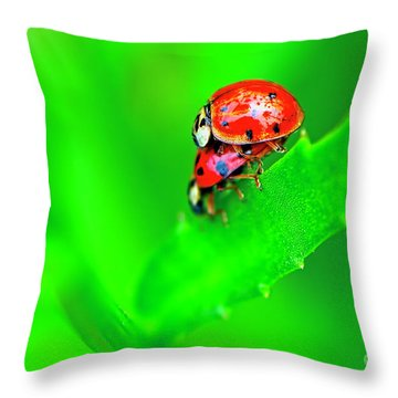 Throw Pillow featuring the photograph Love Bugs by Sharon Talson