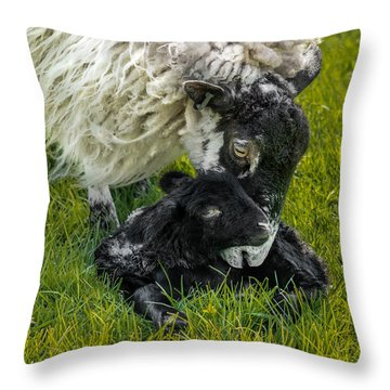 Just Born Throw Pillow