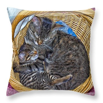 Love In A Hand  Basket  Throw Pillow by Constantine Gregory