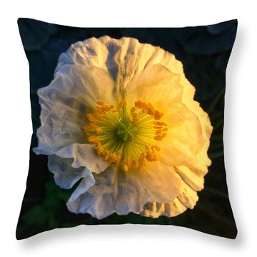 Love In The Morning Throw Pillow