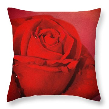 Love Is A Red Rose With Raindrops Throw Pillow by Diane Schuster