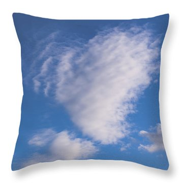 Throw Pillow featuring the photograph Love Is In The Air by David Isaacson