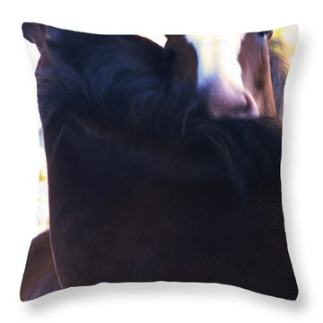 Love Throw Pillow by Linda Shafer