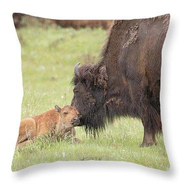 Love My Mama Throw Pillow