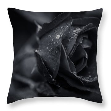 Sweet Love Roses And Water Throw Pillow by Miguel Winterpacht