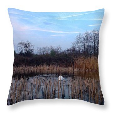 Swan And Blue Sky Throw Pillow