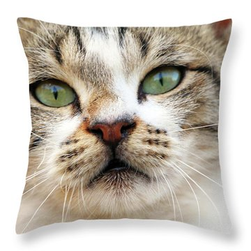 Throw Pillow featuring the photograph Loved by Munir Alawi