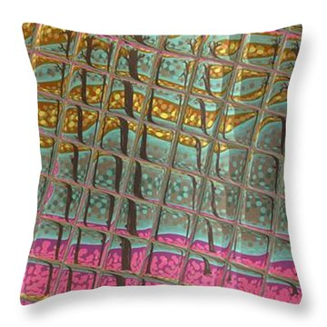 Lovells Reflections Throw Pillow by Alan Hogan
