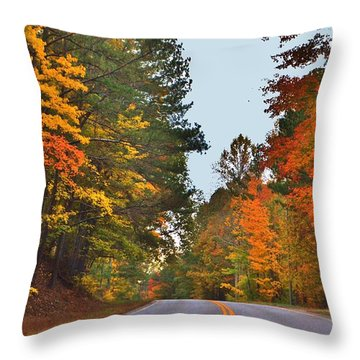 Lovely Autumn Trees Throw Pillow