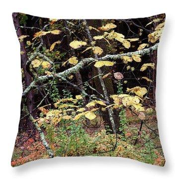 Lovely Autumn Witch Hazel -   Throw Pillow